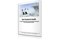 Whitepaper von Comarch Der Content Audit